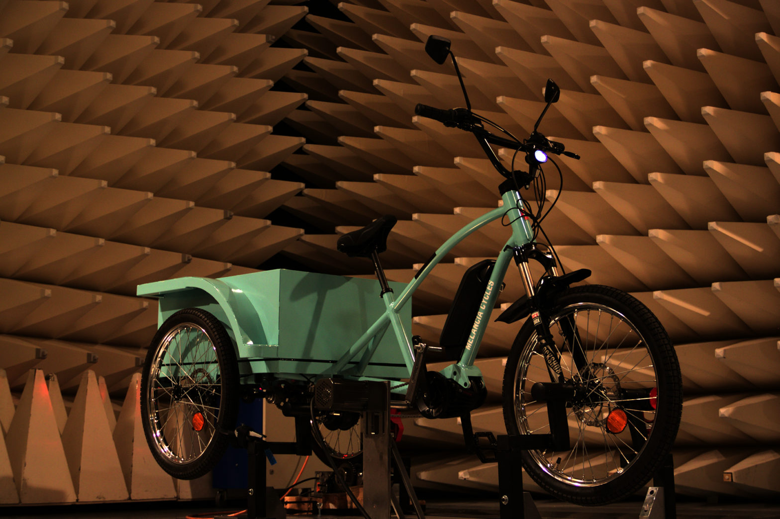 Electrically Assisted Bike